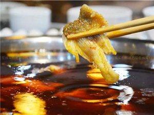 冬天就吃鱼火锅!老板壕气送,合江这家鱼摆摆让你爽到爆!