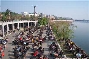 腊梅花开的季节,春节就要到啦,人们喜气洋洋迎新春(组图)
