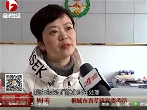 桐城:所队联手侦破一起故意伤害致人死亡案件