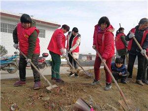 """新春走基层·威尼斯人注册""""红马甲""""特别报道:村民:我们都是志愿者"""