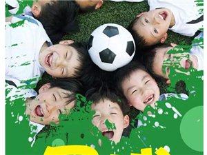 澳门赌博网站青少年足球训练中心冬训班正在招生中!