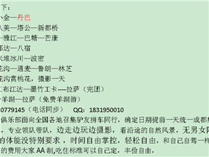 2019年3月林芝桃花、丹巴梨花―活�诱心贾校涸揭捌窜�