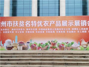 滁州市扶�特���r�a品展�N��(�S拍)