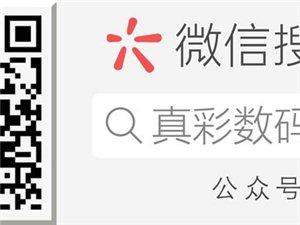 """[公告]2019年""""真彩""""杯《年味》主�}�z影比�"""