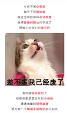 桐城这家足浴中心要火!福利绝对够爆!