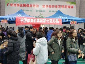 滁州:借助体育活动开启2019首场体彩嘉年华