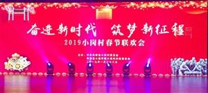 2019年小岗村春节联欢会精彩呈现