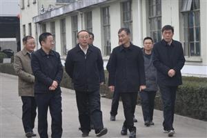 滁州市领导莅临明光酒业考察指导工作