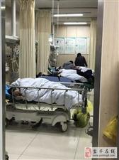 杭州7男1女紧急送医最小13岁