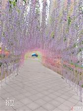【终于来开园了】富顺滨河公园首届梦幻花神节开园!关键还门票免费送!