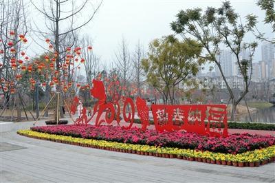 成都龙泉驿:街道更美城市更靓年味儿更浓