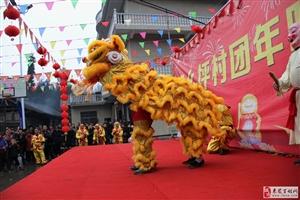 雄狮起舞闹新春