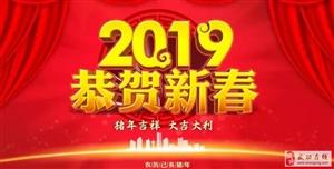 【2019新春佳节】武功县人民政府县长林梅新春祝辞