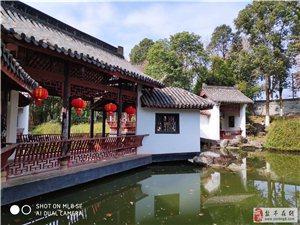 盐亭周边游 绵阳西山公园梅花报春早!