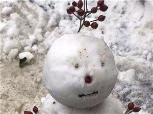 """说出来你可能不信!济阳又要""""下雪""""了……"""