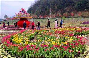 春节黄金周射洪实现旅游收入2.72亿元