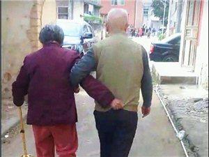 这大概就是爱情的模样吧
