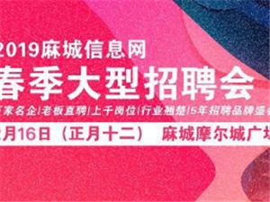2019麻城信息�W春季大型招聘��!