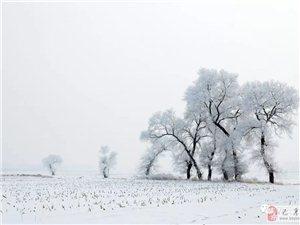 苏城巴彦摄影之巴彦有个雾凇屯-吴欣新