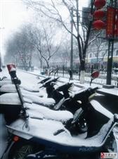 盼着,盼着,吕梁终于降下了大雪!