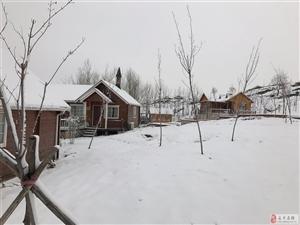 花庄假日营地雪景