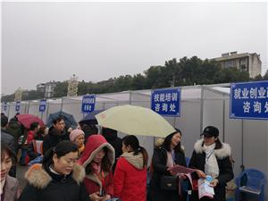 春风暖人心行动助就业―江夏区2019年春风行动大型招聘会成功举办