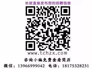 2月15日桐城最新招聘信息!