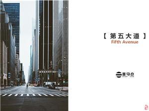 第五大道●现代风格