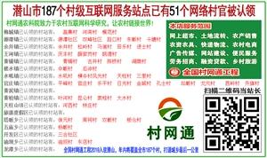 村网通村级互联网服务站(实体店);招商方案