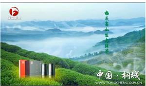 桐城小花――杨头雾里香首登安徽卫视