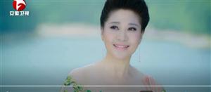 喜讯!桐城小花――杨头雾里香首登安徽卫视
