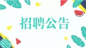 【招考】2019年营口站前区公安分局公开招聘35人公告!