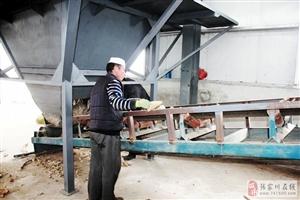 张家川县贝尔克生物制品有限公司与张家川在线达成战略宣传合作