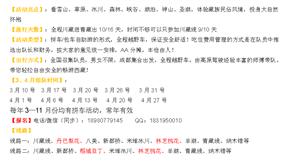 3月―4月―稻亚―丹巴梨花―林芝桃花―羊湖9/10/16天―越野拼车组