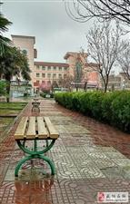 【有邰书院摄影集】三月里的小雨――摄影/党小成