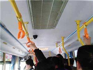 亚游至旧城公交车飞发发,谁管管