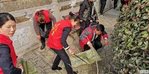 临泉环保志愿者保护十字河绿化带