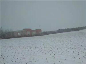 �|��建平下雪啦!�|西干旱去年一��冬天都�]有下雪