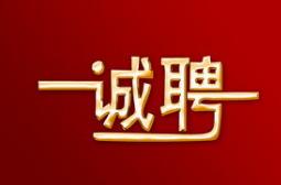 中国联通陕西分公司春季招聘公告(24人)