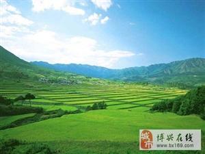 博兴―家乡的发展。