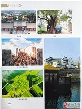 【编辑历程】《武功县志1991~2010》即将出版发行!第三期/董社昌
