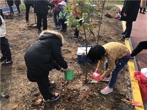 """大滁网携手明珠英语学校开展""""美丽滁州・绿色家园""""亲子公益植树活动"""