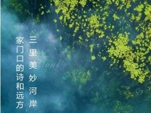 【江山・壹号】三里美妙河岸,家门口的诗和远方