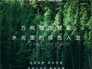 【江山・壹号】万吨城市鲜氧,水光里的绿色人生