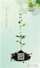 【盛玺・花园】手植一片绿,自然林距离