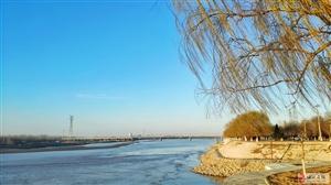 春・黄河岸边