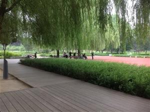 漯河市中医院即将整体搬迁!投资6个亿,占地113亩!