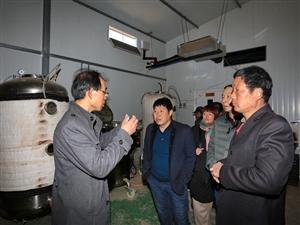 食用菌技术升级、促进乡村产业发展