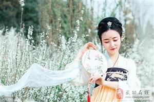 【邰韵古城】苏蕙织锦回文与武功民间送手绢风俗