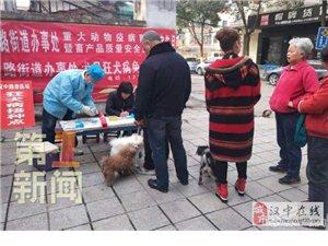 �h中�h�_:所有犬只免�M接�N狂犬疫苗